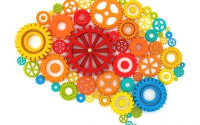 Comment garder son cerveau en bonne santé?