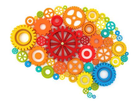 Comment garder notre cerveau en bonne santé?
