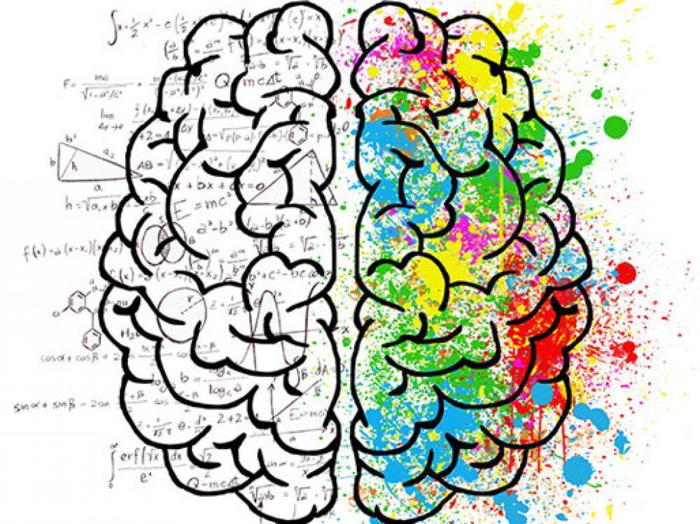 Des chercheurs parviennent à suivre le cheminement d'une pensée dans le cerveau.